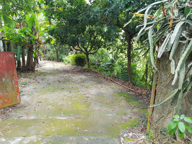 中興林場5甲5農地,台南市龍崎區大坵
